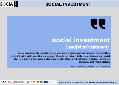Social investment definition