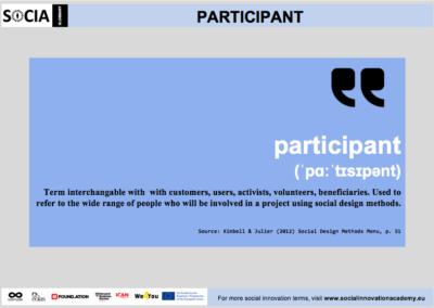 Participant definition